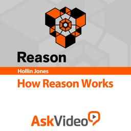 How Reason Works